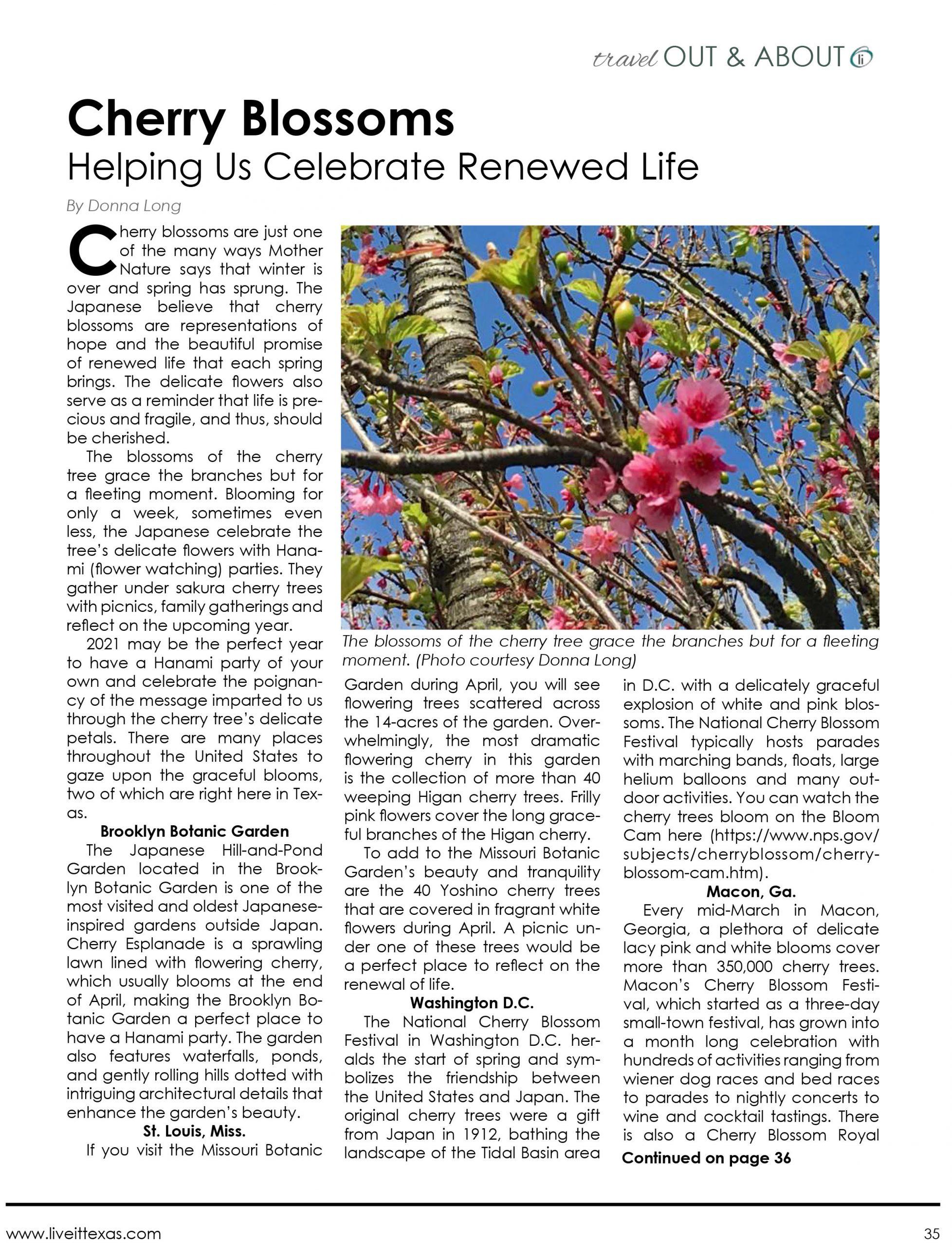 Cherry Blossoms: Helping Us Celebrate Renewed Life – LiveIt Texas
